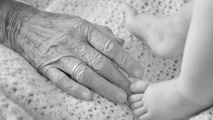 custodia abuelos nieto menor